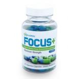 อาหารเสริมบำรุงสมอง  ยี่ห้อ Brain Supplement FOCUS by Excelerol - Dr. Recommended Brain Pill