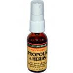 Propolis ยี่ห้อ Y.S. Eco Bee Farms, Propolis & Herbs, High Strength, Spray, 1 fl oz (30 ml)