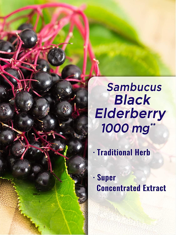 อาหารเสริม sambucus elderberry ยี่ห้อที่ไหนดีเป็นอันดับที่ 6 ของอเมริกา